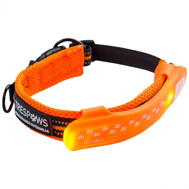 Trespaws Disco LED Dog Light Up Collar