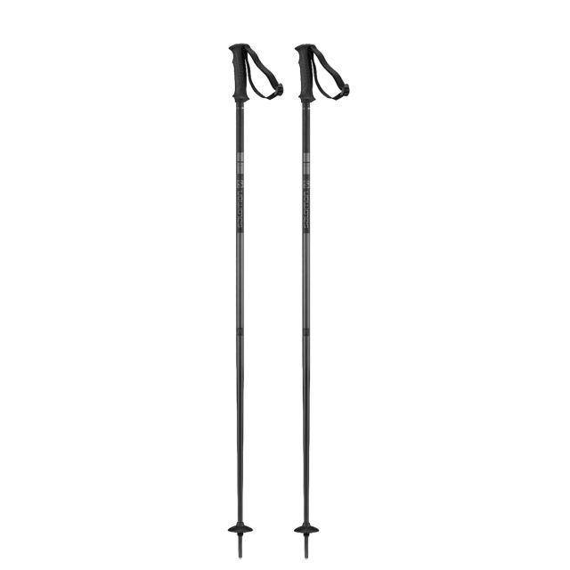 Salomon Unisex ARCTIC Ski poles
