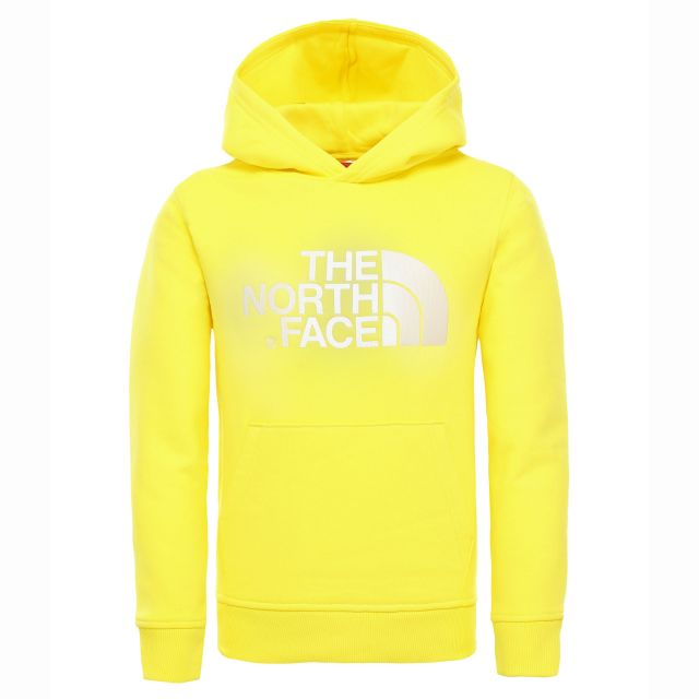 The North Face Kids Drew Peak Hoodie