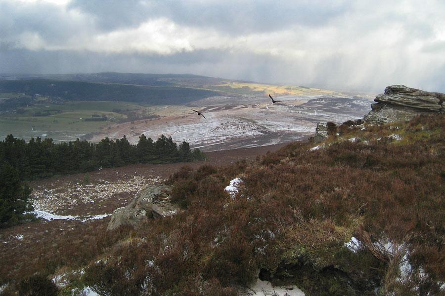 Simonside Hills - Flickr